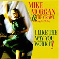 Cover of the track I Like the Way You Work It