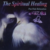 Cover of the album Nazca - the Spiritual Healing - Pan Flute Relaxation