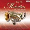 Couverture de l'album Top 101 Melodien der Volksmusik Vol. 1