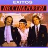 Cover of the track Será Porque Te Amo