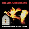 Couverture de l'album Burning Your House Down