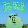 Couverture de l'album Double Dreaming
