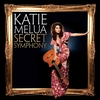 Cover of the album Secret Symphony (The Secret Session Edition)