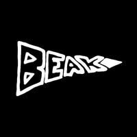Cover of the track Beak>