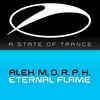 Cover of the album Eternal Flame - Single