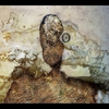 Couverture de l'album OM