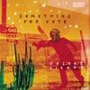 Couverture de l'album Desert Lights