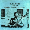 Cover of the album Live in Cook County Jail