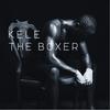 Couverture de l'album The Boxer