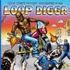 Couverture de l'album Madlib Medicine Show #5: The History of the Loop Digga, 1990-2000