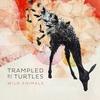 Cover of the album Wild Animals