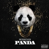 Couverture de l'album Panda - Single