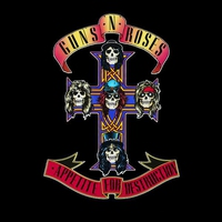 Cover of the track Appetite for Destruction