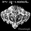 Cover of the album Disentangle