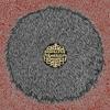 Cover of the album Roadkillovercoat