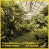 Couverture de l'album Tropical Drums of Deutschland