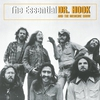 Couverture de l'album The Essential Dr. Hook & The Medicine Show