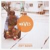 Couverture de l'album Waves - Single
