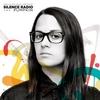 Couverture de l'album Silence Radio