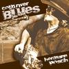 Couverture de l'album Cold River Blues