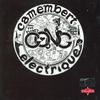 Couverture de l'album Camembert électrique