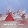 Couverture de l'album Fractal World