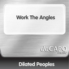 Couverture du titre Work the Angles