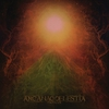 Cover of the album Nomas