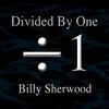 Couverture de l'album Divided by One