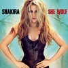 Cover of the track - She Wolf