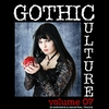 Cover of the album Gothic Culture, Vol. 7 - 20 Darkwave & Industrial Tracks
