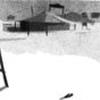 Cover of the track SEASHORE BANG