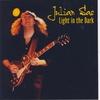 Cover of the album Light in the Dark