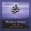 Couverture de l'album Shalom Salam, Volume 2