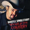 Cover of the album Rockin' In the Country