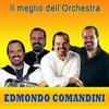 Cover of the track El Chico (Meneaito)