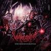 Couverture de l'album Finis Omnium Ignorantiam