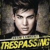 Cover of the track Trespassing