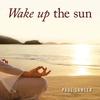 Couverture de l'album Wake up the Sun