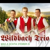 Cover of the album Was a echta Steirer is (Version 2014) - Single
