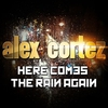 Couverture de l'album Here Comes the Rain Again