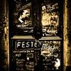 Couverture de l'album Festen