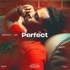 Couverture de l'album Perfect - Single