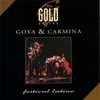 Couverture de l'album The Gold Series: Festival Latino