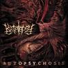 Couverture de l'album Autopsychosis