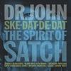 Couverture de l'album Ske-Dat-De-Dat: The Spirit of Satch