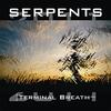 Couverture de l'album Terminal Breath