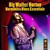 Couverture de l'album Harmonica Blues Essentials