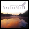 Cover of the album The Very Best of Panpipe Moods