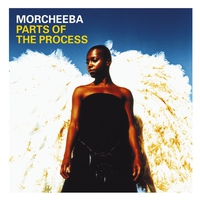 Cover of the track Parts of the Process